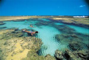 worldtour-programas-praia-do-forte2